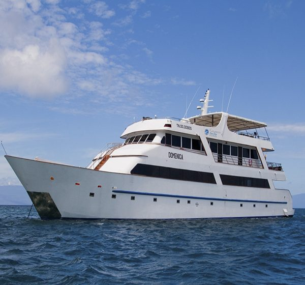 The_Galapagos_Sea_Star_Journey